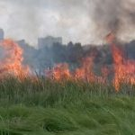 Лист щодо вжиття заходів щодо недопущення пожеж